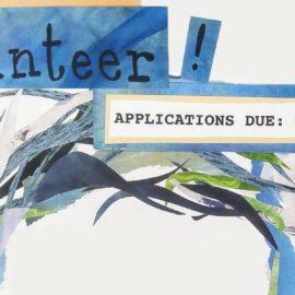 2017 Volunteer Training!