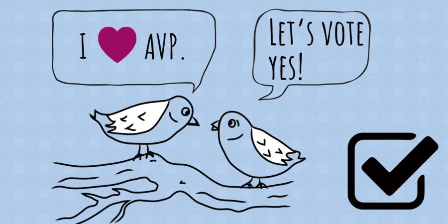 Vote yes for AVP