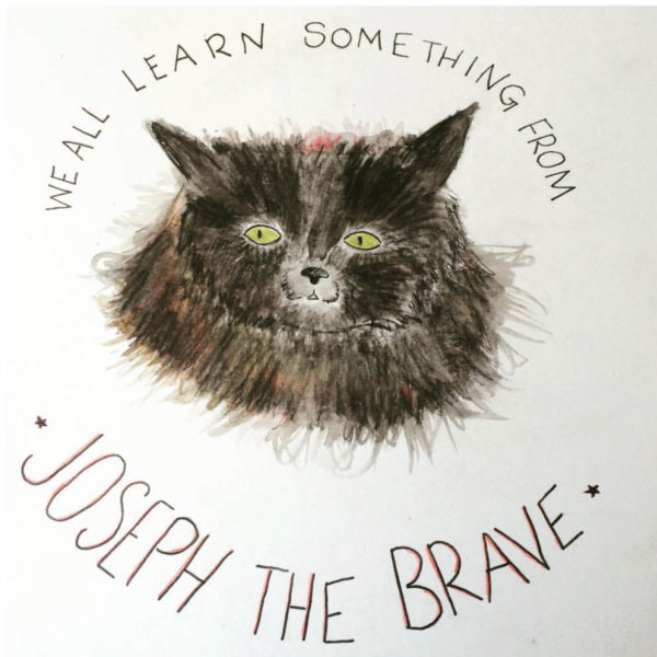 "A drawing of a black cat. Around it are the words "" we all learn something from Joseph the Brave"""