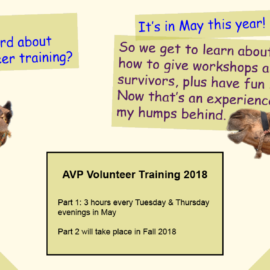 Volunteer with us in 2018!