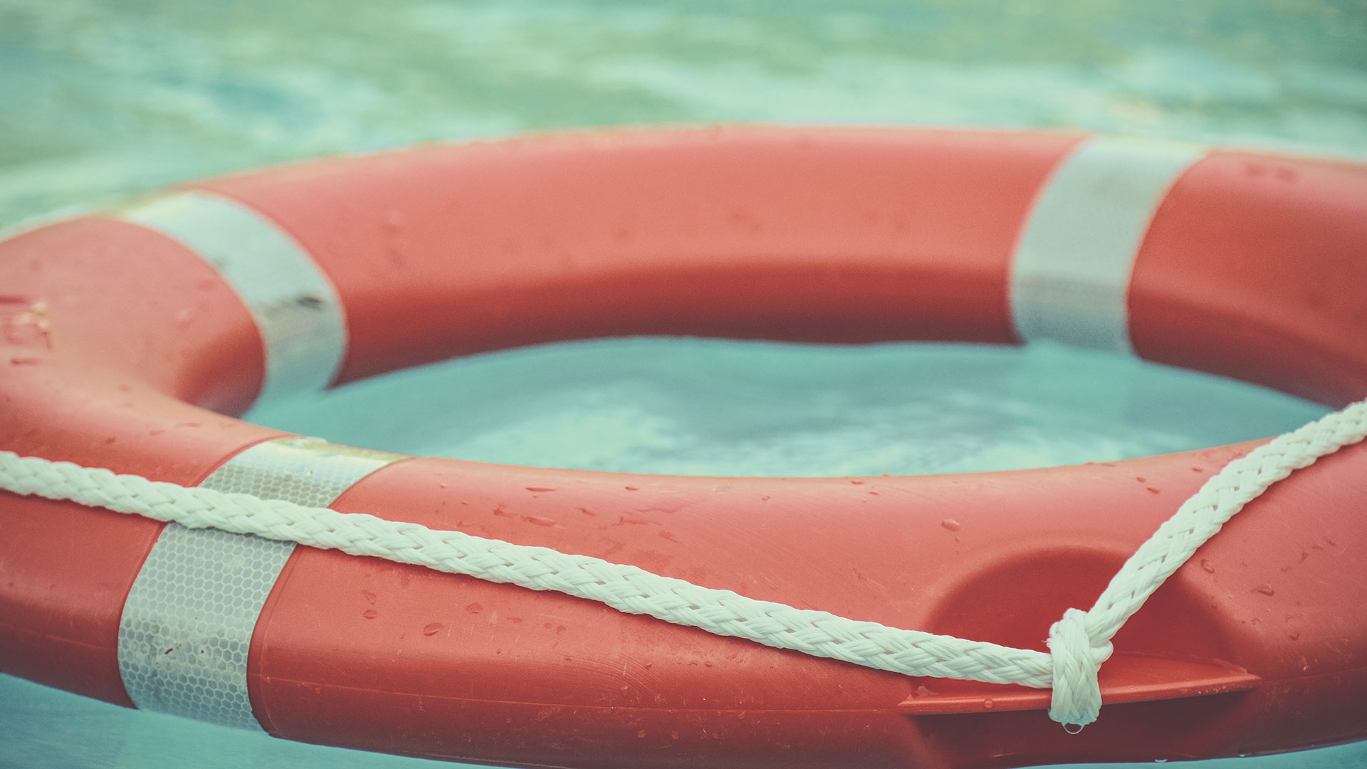 Image of a red life preserver floating in water.